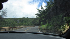 Drive through the jungle to Nakalele Point